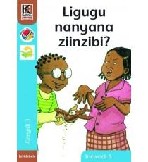 Kagiso Readers, Grade 3, Book 5: Ligugu nanyana ziinzibi? - IsiNdebele