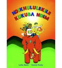 Stars of Africa IsiXhosa Readers, Grade 4: Ndikhululekile kukuba ndim