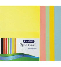 Marlin Project Boards A1 160gsm 100's Pastel assorted