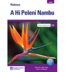 Platinum A Hi Peleni Nambu Geredi 11 Teacher's Guide (CAPS)