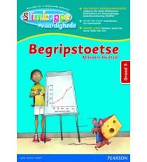 SLIMKOPPE Vaardighede Begripstoetse GR 5