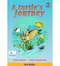 Stars of Africa Reader, Grade 3: A turtle's journey (Big Book)